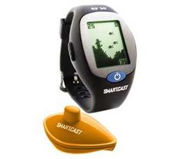 Smartcast RF30e - фото 1